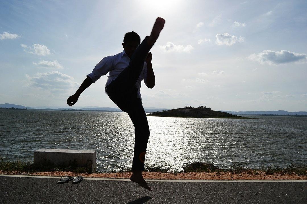 A importância do Kung Fu para qualidade de vida - um relato pessoal.