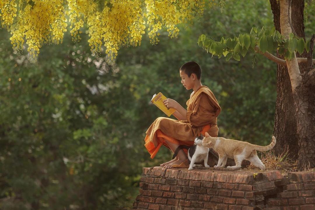 Autoconhecimento é compreender o mundo - Ecologia, espiritualidade e desenvolvimento pessoal